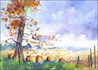 Pumpkin Patch Original painting